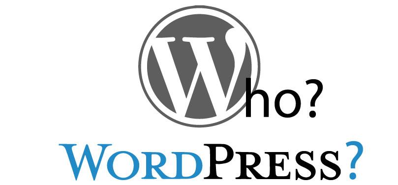 testata-articolo-wordpress